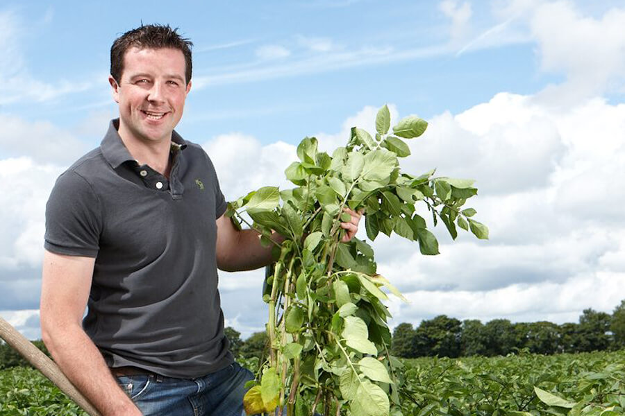 Tom Keogh | Irish Potatoes | Keogh's